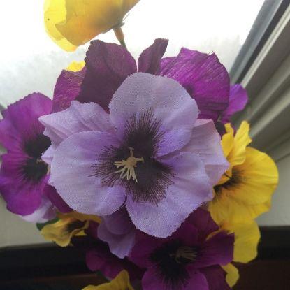 Levender Flowers
